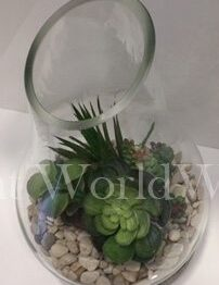Glass Terrarium Pottery Base