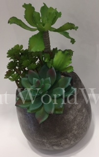 Pewter Base with Succulents
